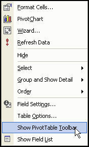 pivot_table_show_toolbar